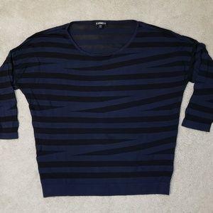 Express Lightweight Mesh Dolman Striped Sweater